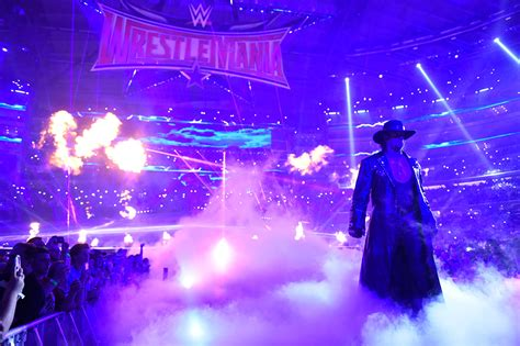 WWE: Undertaker could fight one of these superstars at
