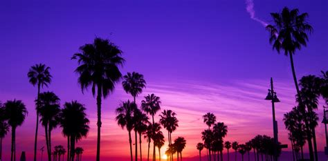 The ridiculously funny things one overhears in Los Angeles