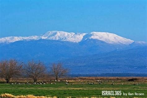 The Dew of Hermon - Breaking Israel News   Latest News