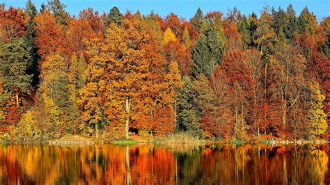 How Climate Affects the Look and Feel of Fall   Blog