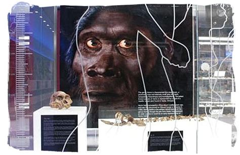 Ancient South Africa, the Cradle of Human kind